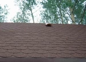 Крыша с битумной черепицы